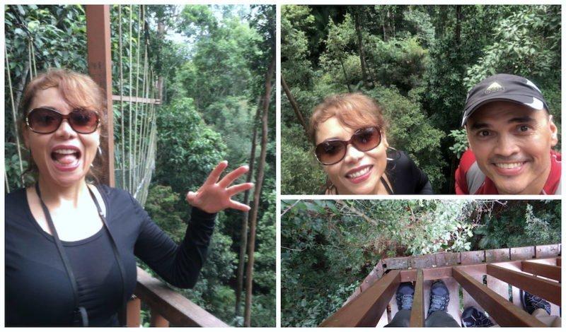 Enjoying the Canyon Walk at Taman Negara near Kuala Lumpur in Malaysia