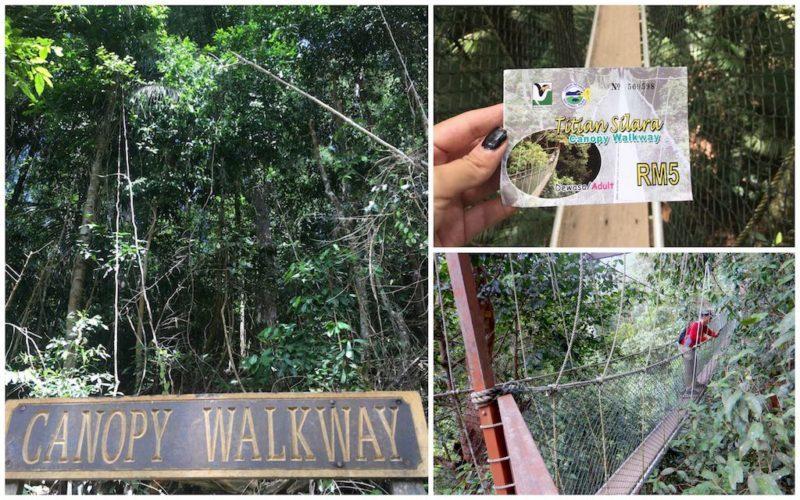 Canyon Walk at Taman Negara near Kuala Lumpur in Malaysia