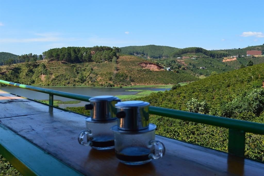 Dalat Coffee Plantation in Da Lat, Vietnam. Central Vietnam in Southeast Asia.