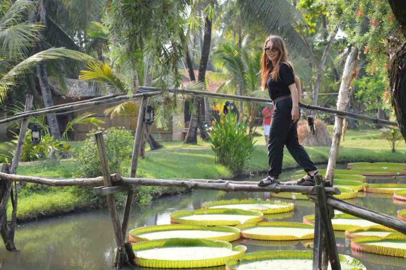 Giant Water Lily Pads Binh Quoi Village in Saigon Vietnam. Ho Chi Minh City in Southeast Asia South Vietnam